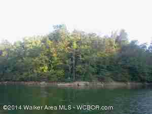 Clear Creek Waterfront Lot