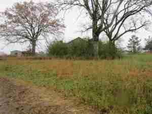 fenced land